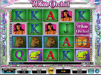 Бонусная игра White Orchid 1